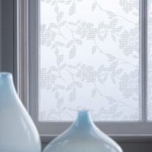 Bright Idea…Privacy Decorative Adhesive Window Film by Emma Jeffs