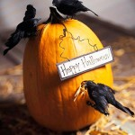 DIY Halloween blackbirds on pumpkin