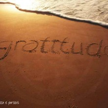 Spilling Gratitude This Thanksgiving ~ My Gratitude Tree