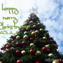Happy Merry Christmas to You!!!
