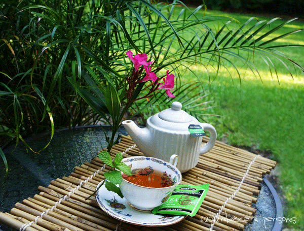 cup of Bigelow tea on porch