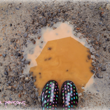 my polka dot boots in a mud puddle