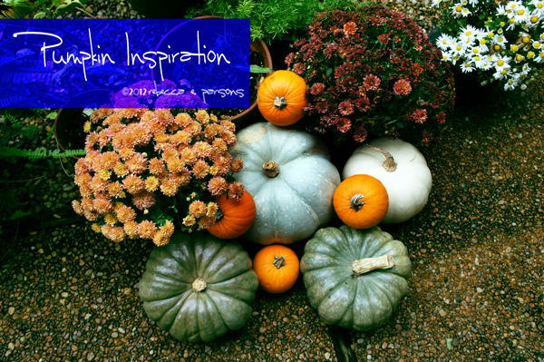 Colorful Pumpkins Rebecca E. Parsons photography