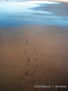 Footprints in sand #HolidayGuide