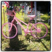 spray painted pink bike photograph