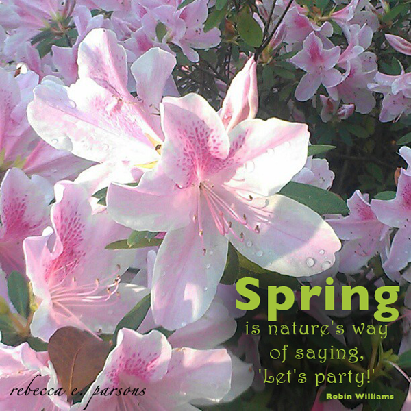SPRING-party-quote-photography-by-rebecca-parsons
