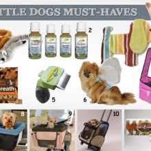 Little Dog Must Haves ~ Great Dog Gifts