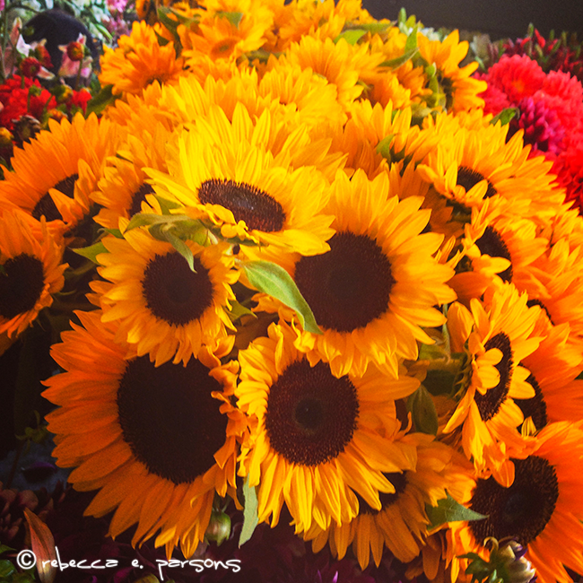 sunflowers-at-Pikes-Place-Market-seattle