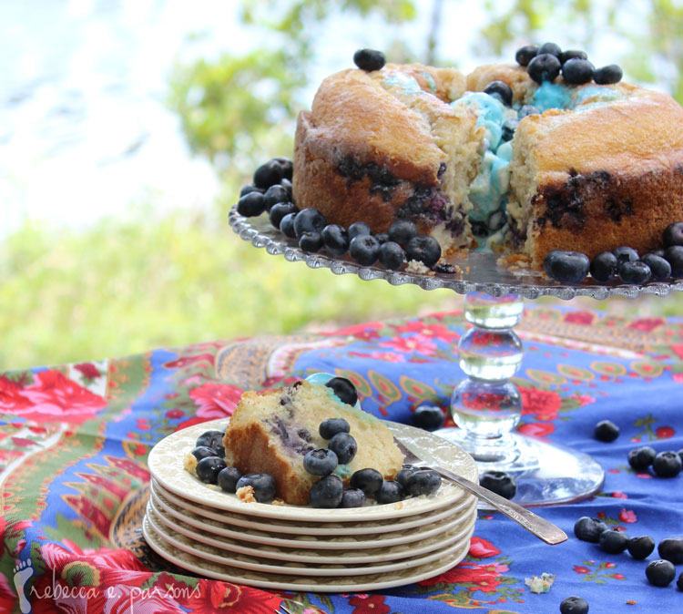 Gluten Free Blueberry Orange Cake by the lake