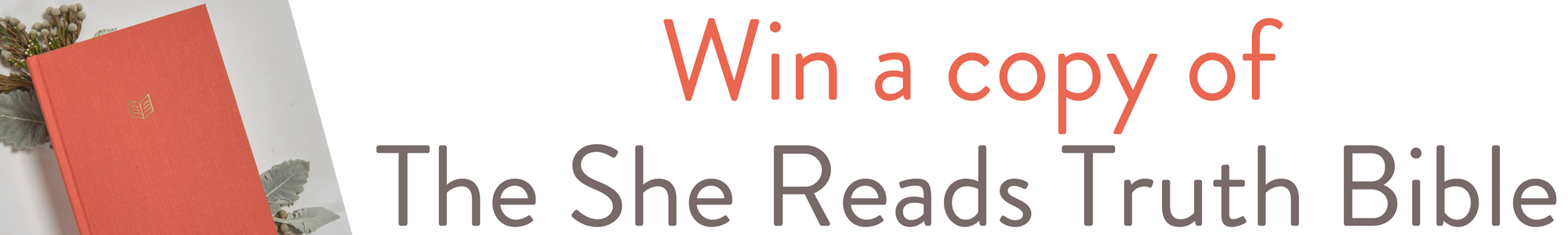 Win 1 of 5 Copies She Reads Truth