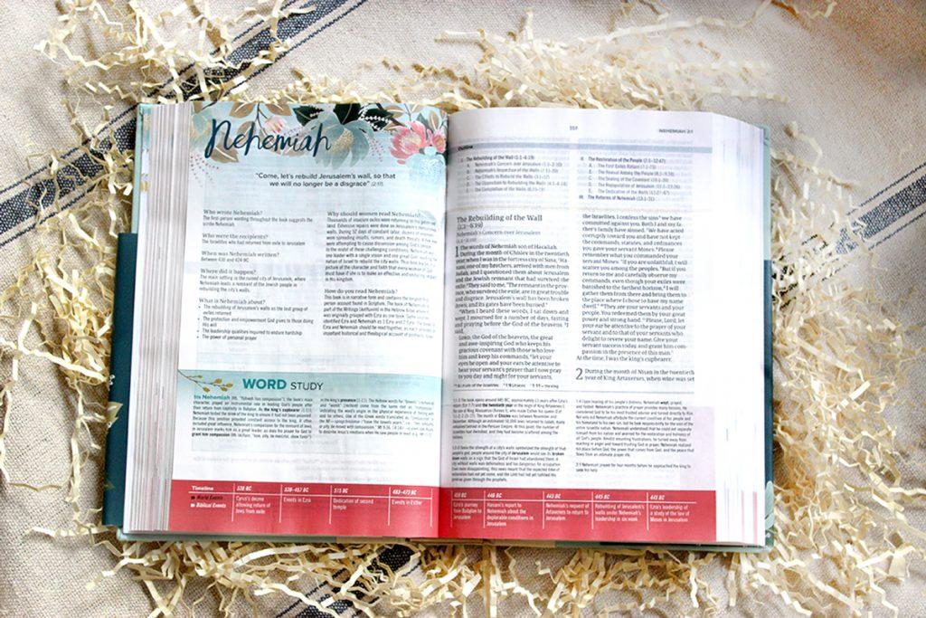 Study Bible Word Study