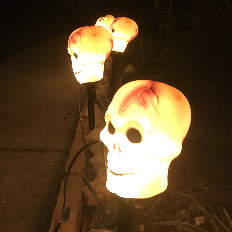 lighted skulls along walkway close