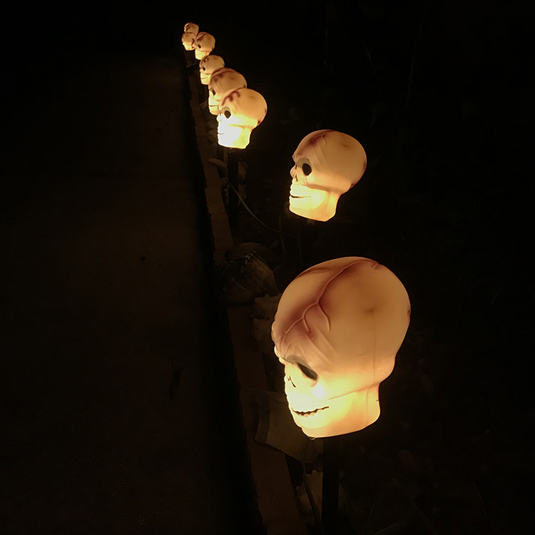 lighted skulls along walkway