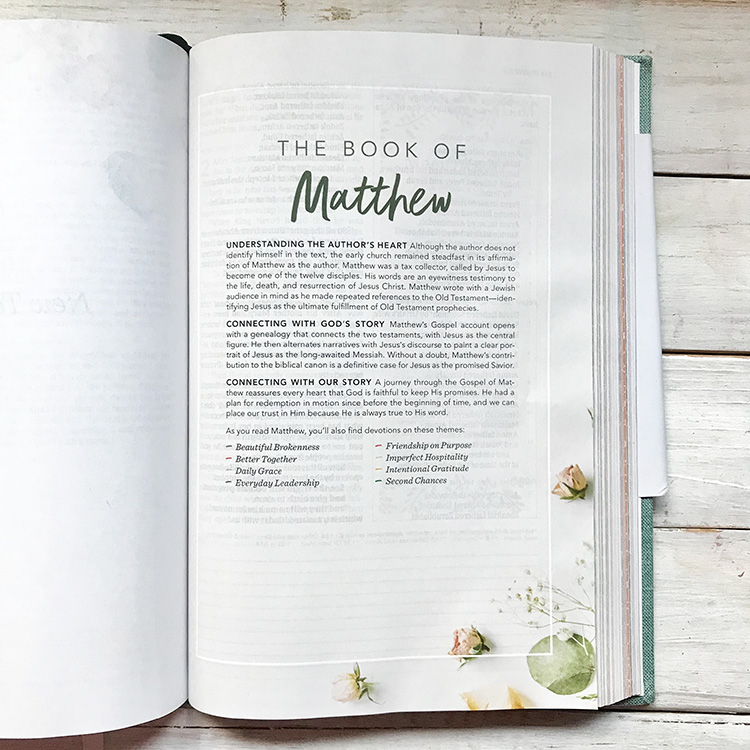 Book Introductions Matthew (in)Courage Devotional Bible