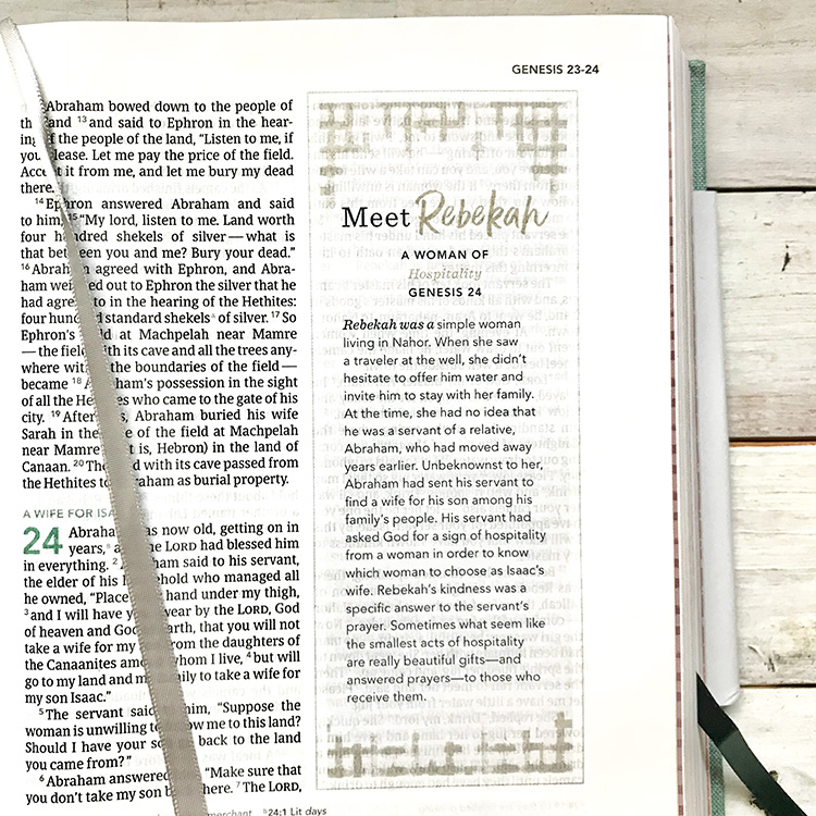 Rebekah (in)Courage Devotional Bible
