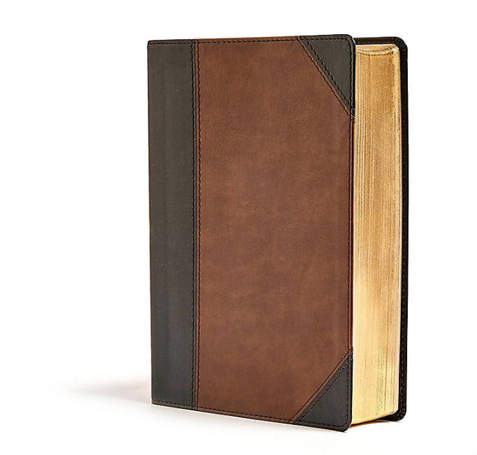 Bible Cover Gold Edges